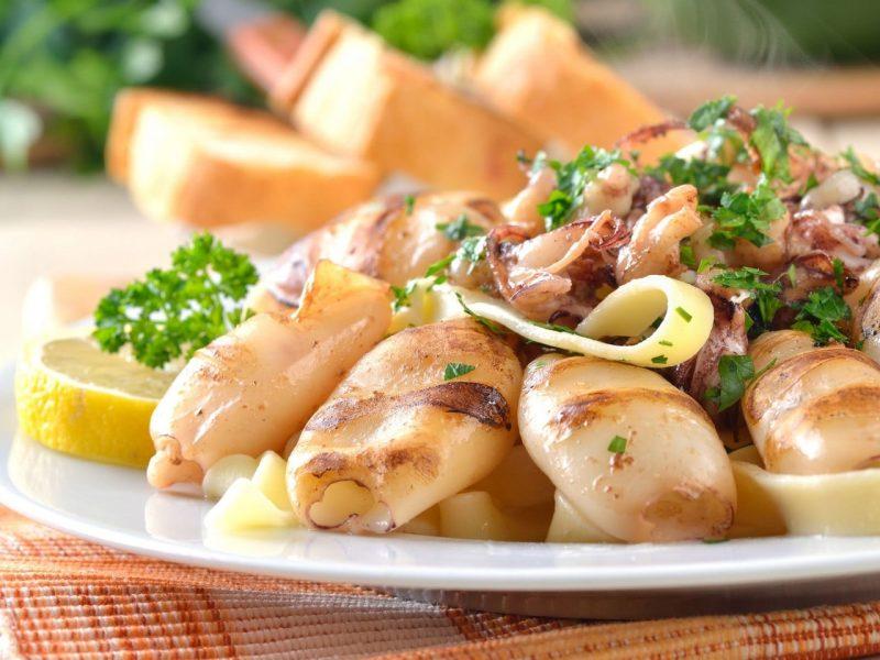 calamar-patagónico
