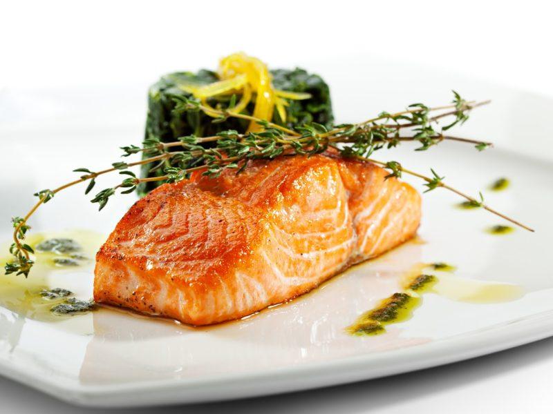 salmon-salar